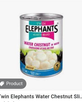 Twin Elephant Water Chesnut Sliced