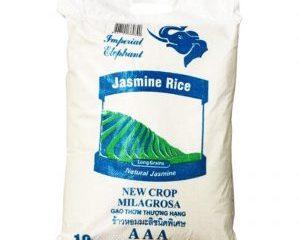 Jasmine 10 k